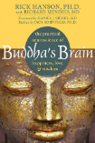 Buddhas brain practical neuroscience book