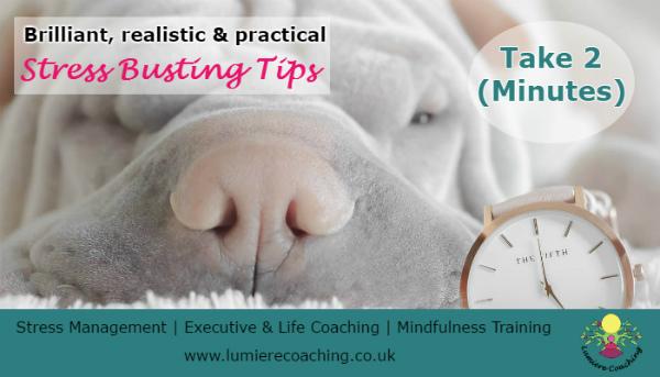 Stress Management Tips - refocus for a calmer mind
